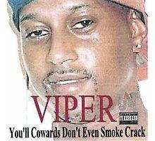 Viper - You'll cowards Photographic Print