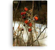 Winter Road – Williamstown Canvas Print