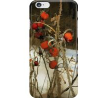Winter Road – Williamstown iPhone Case/Skin