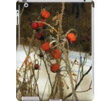 Winter Road – Williamstown iPad Case/Skin