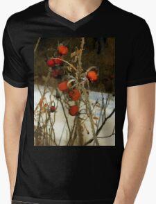 Winter Road – Williamstown Mens V-Neck T-Shirt