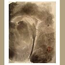 calalily Sumie by Suryani Shinta