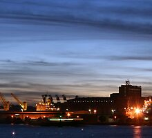 Grain Corp. Newcastle by specialgreg