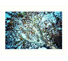 autumn's coming Art Print