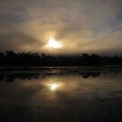 Foggy Sunrise Down At the River - Unedited by Bine