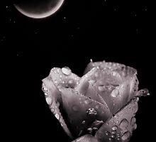 Moon talk by Carole Felmy