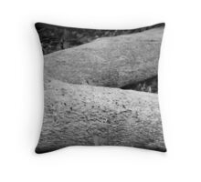 The Naked Truth Throw Pillow