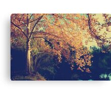 Warm Arms Canvas Print