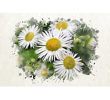 Daisy Watercolor Art Photographic Print