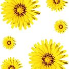 Yellow Everlastings Stickers by STHogan