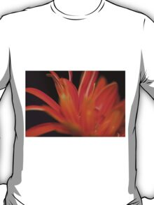 Flower Flames  T-Shirt
