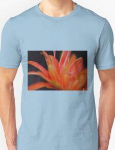 Flower Flames  T-Shirt