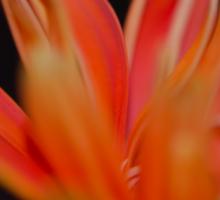 Flower Flames  Sticker