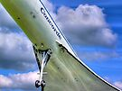 Concorde - 2 - Brooklands - HDR by Colin  Williams Photography