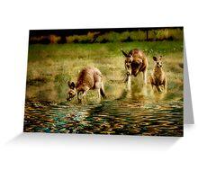 three kangaroos Greeting Card