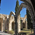 Bellapais Abbey, Northern Cyprus by Beth A