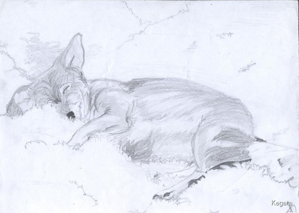 Dog by Kagara