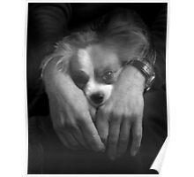 Portrait of Gigi Poster