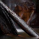 Log Jamb by Crispin  Gardner IPA
