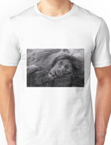 Sleeping Lion at Paradise Wildlife Park Unisex T-Shirt