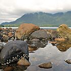 Vancouver Island by John Kardys