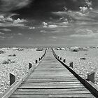 Mono Boardwalk by duroo