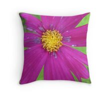 labyrinth petals Throw Pillow