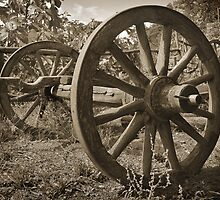 Rural Relic by louise