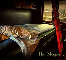The Sleeper . . .  by Rosalie Dale