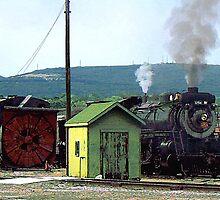 Steam Engine Coming into Train Yard by Susan Savad