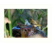 THE JOY OF MY WATER-FEATURE Art Print