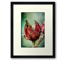 Roselle Framed Print