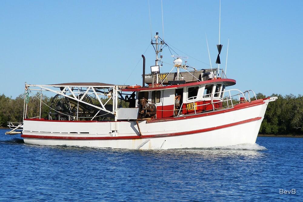 Barra Boat by BevB