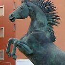 63 - REARING STALLION STATUE, CIUTADELLA - 10 (D.E. 2005) by BLYTHPHOTO