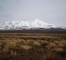 Mt. Ruapehu by elizabethrose05