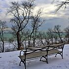 Bench With Lake View by EBArt