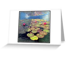 Pink Water Lilies at Sunset in a Mirrored Frame Greeting Card