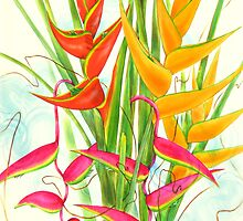 Heliconia by Siameseboy