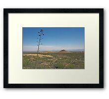 Agave Stem Framed Print