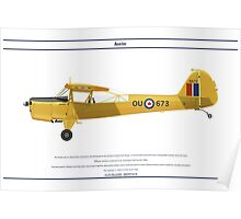 Auster Canada 1 Poster