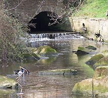Water Tunnel by LoneAngel