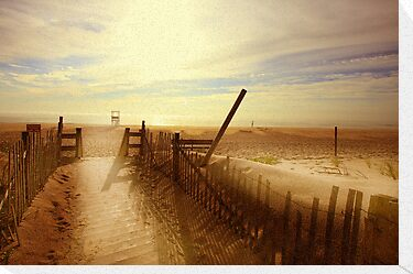 Nauset Beach, Early Morning. by capecodart