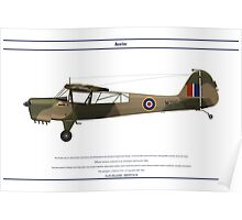 Auster GB 4 Poster