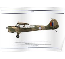 Auster GB 6 Poster