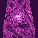 Purple Rose by Kim Pease
