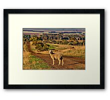 """The Lost One"" (2) Framed Print"