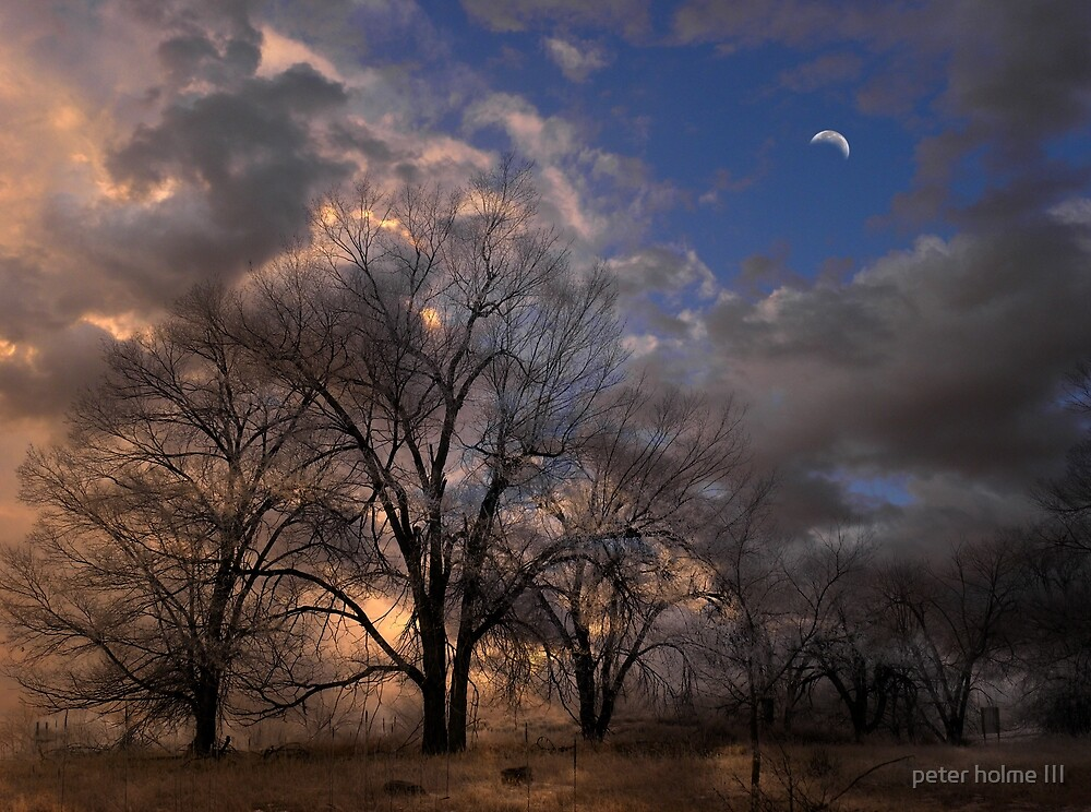 3397 by peter holme III