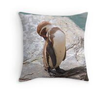 Penguin Preening ....... Throw Pillow