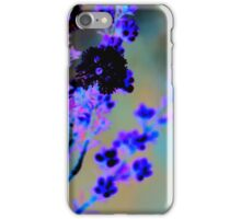 Australian wildflower - abstracted colours iPhone Case/Skin