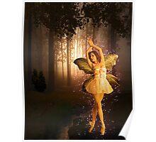 Ballerina Fairy Poster